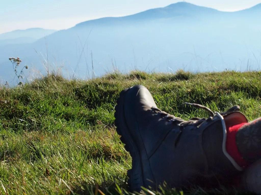 Entre Vosges et Forêt-Noire, où se mettre au vert