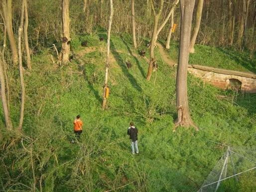 Des étudiants en séance d'observation dans l'un des 8 enclos du fort Foch. (doc remis)