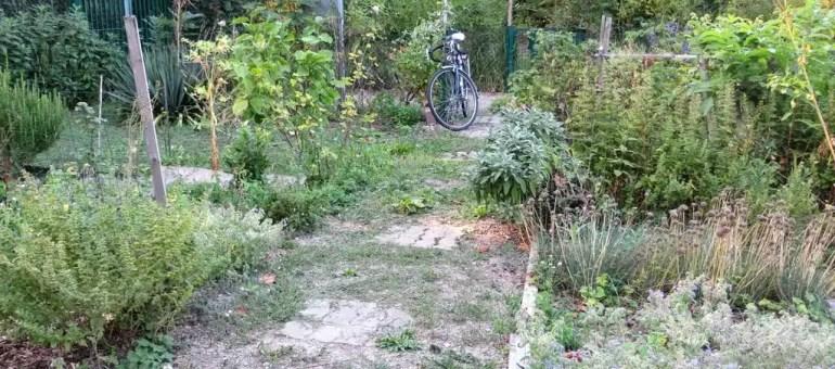 À l'ouest de Strasbourg, on ne badine pas avec les jardins familiaux