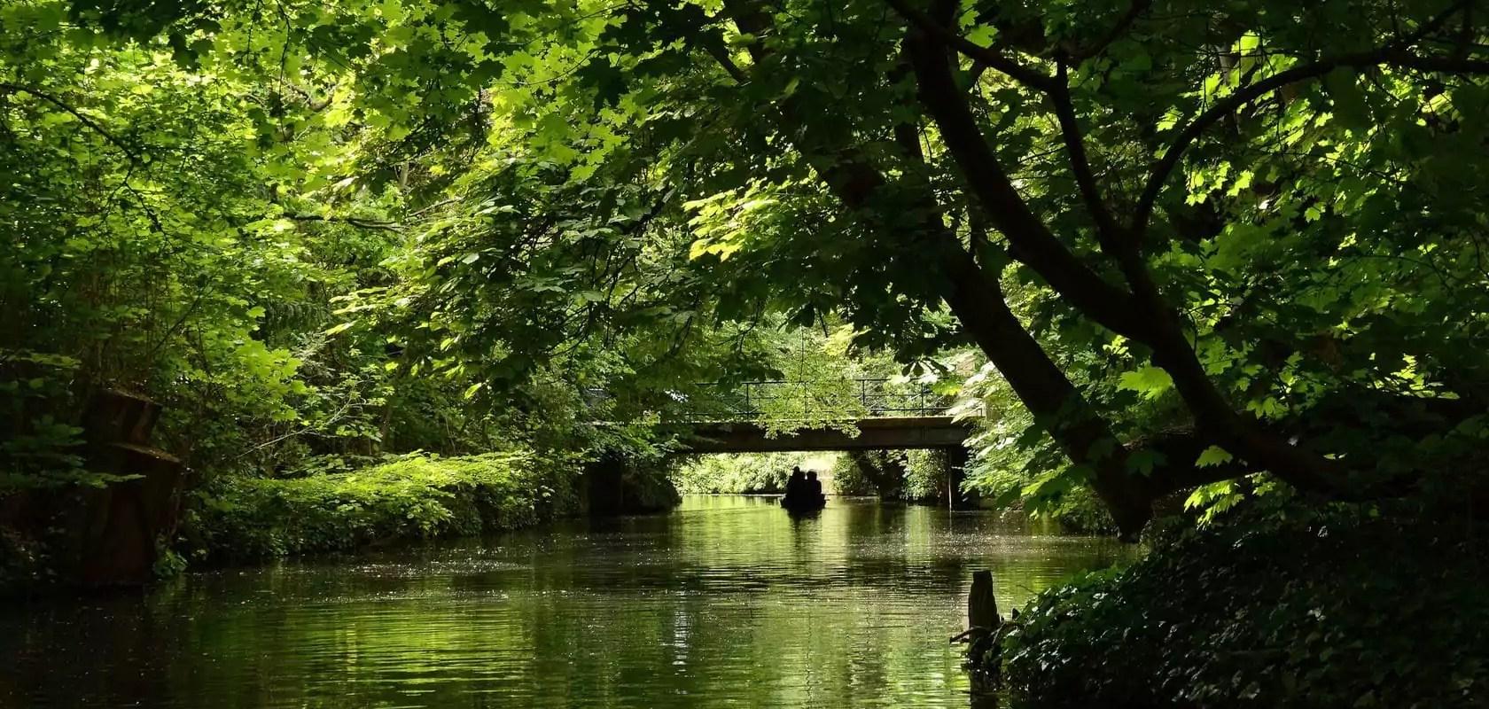 Alsace Nature appelle à la mobilisation contre la pollution des eaux alsaciennes