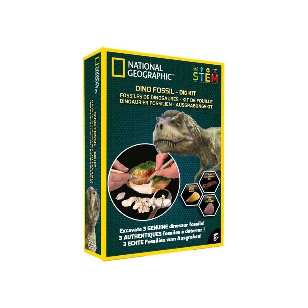 marque generique decouverte nature decouverte animaux decouverte insectes national geographic kit de fouille 3 fossiles de dinosaures a