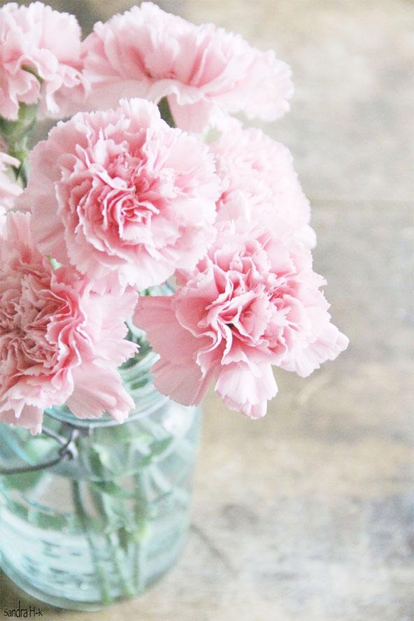 Reprages Mariage 4 Les Fleurs Dt Rue Rivard
