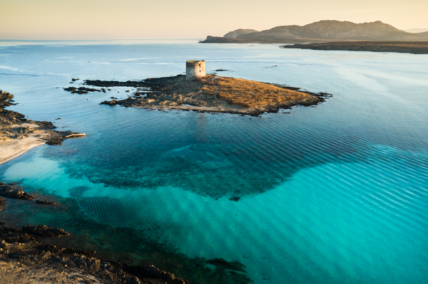 Asinara island and the Spanish tower