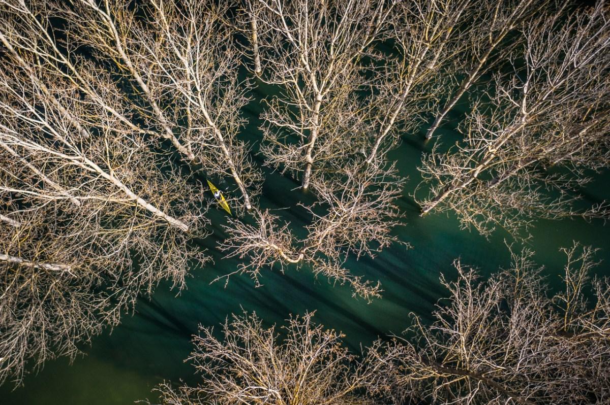 spot the kayak