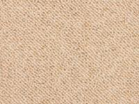 Hypoallergenic Carpeting - Carpet Vidalondon