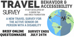 Travel Survey Graphic