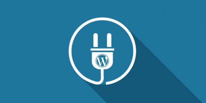 5 Plugin WordPress untuk Mempercepat Website Anda