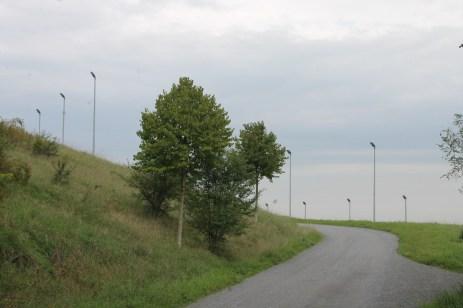 Der Weg zur Leuchte