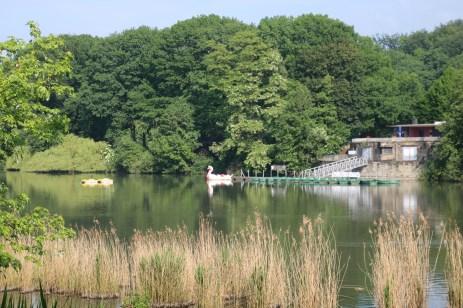 Schwanensee passt auch:)