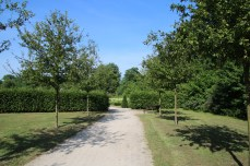Der Weg führt zum Abteigarten