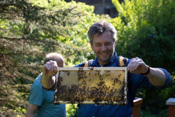 Bienenzucht Lux-Kotten