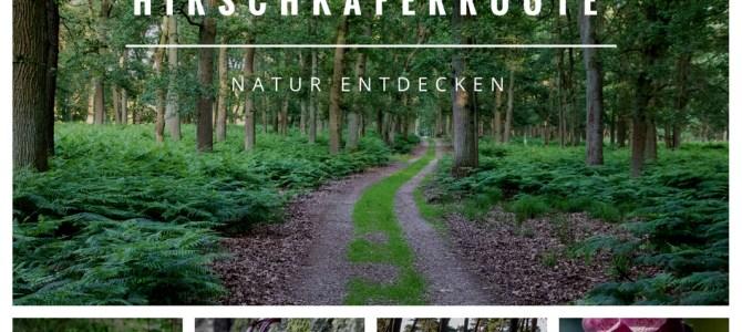 Naturerlebnis Diersfordter Wald – Die Hirschkäferroute in Wesel