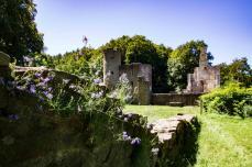 Die Natur erobert die Burg