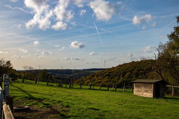 Blick auf die Koppel am Bergerhof
