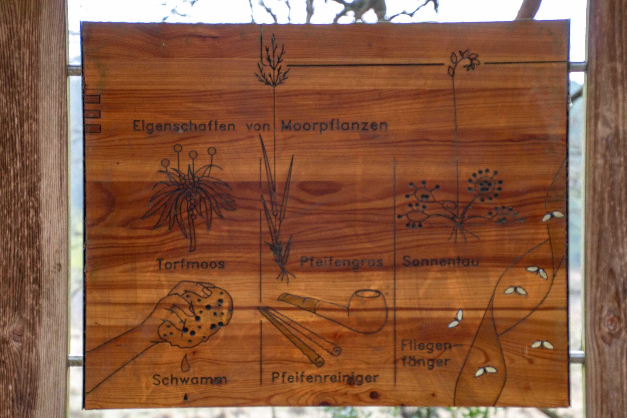 Holztafel mit Erklärungen
