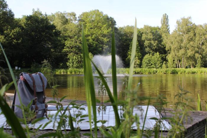 Holzplattform Fredenbaumpark
