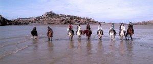 balade-poney-mer-equicentre-de-rulan-tregastel-bretagne