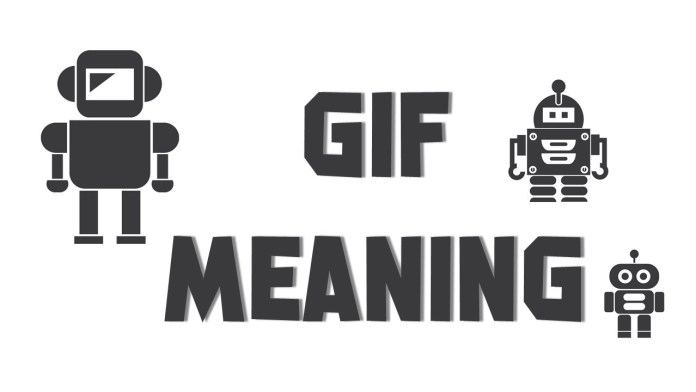 What is the full form of GIF?