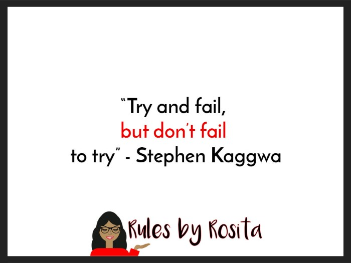 """Try and fail, but don't fail to try"" - Stephen Kaggwa"