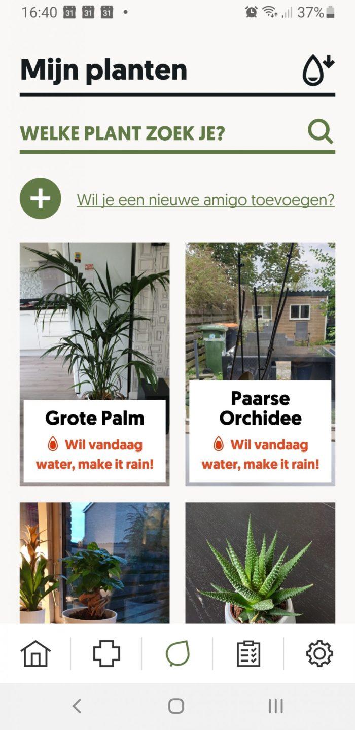 Overzicht van planten