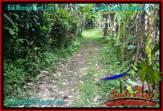 TANAH di TABANAN BALI DIJUAL Untuk INVESTASI TJTB320