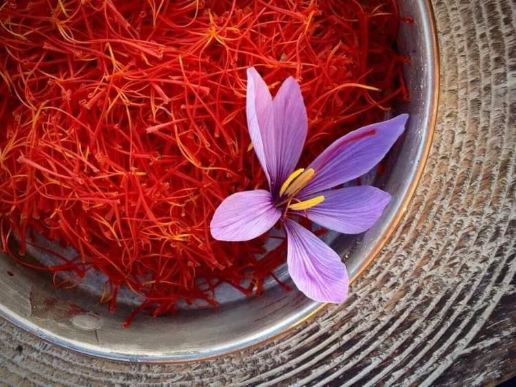 saffron suplemen program hamil, rumah saffron