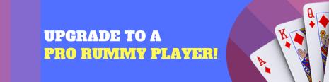 rummy player