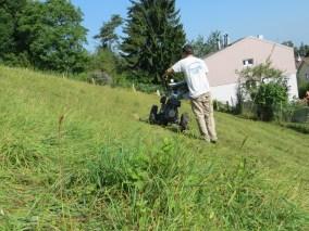 Ein Teil der Weide wurde zum ersten mal mit dem Balkenmäher bearbeitet ...