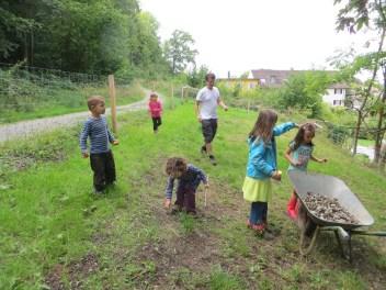 Am Nachmittag wurden kleine Steine auf der Weide zusammengesucht