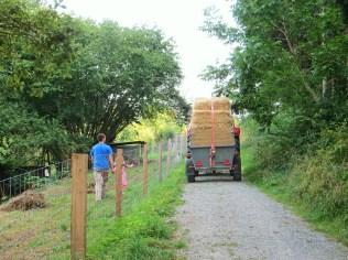 Ankunft des Strohs und der Steine mit Traktor