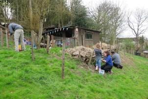 Vorbereitungen für die Schafe: Installation eines festen Zauns
