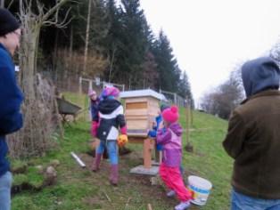 Bienen_Rumpelhalde_Fruehling_5