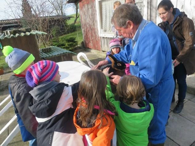 Walter Friedli zeigt uns seine Zucht-Lohkaninchen