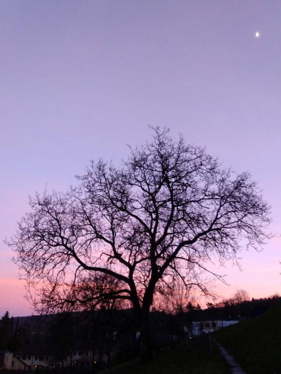 Herbst17_Winter18_Rumpelhalde (11 von 116)