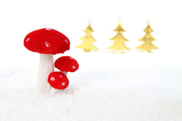 蘑菇混搭食材