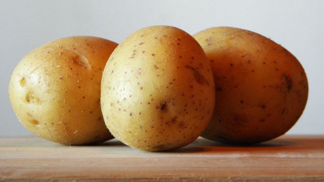 把發芽的芽眼切除馬鈴薯其他部位還是可以吃
