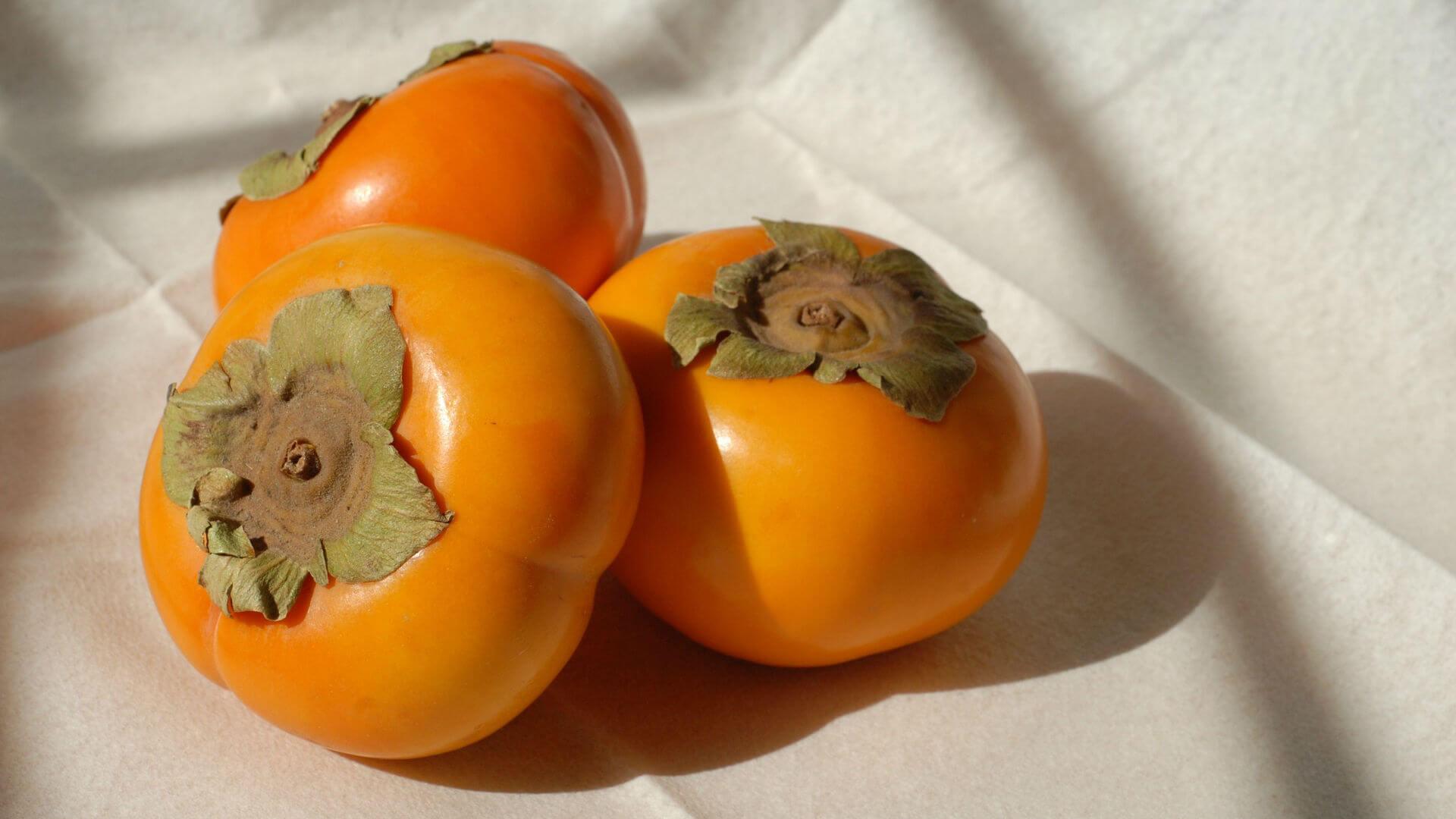 秋天就要吃柿子!有人說:「柿子和牛奶一起吃 會死翹翹」 是真的嗎? - 蘭姆酒吐司