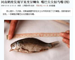 變異魚類的真相,其實來自大陸。(圖翻攝知乎)