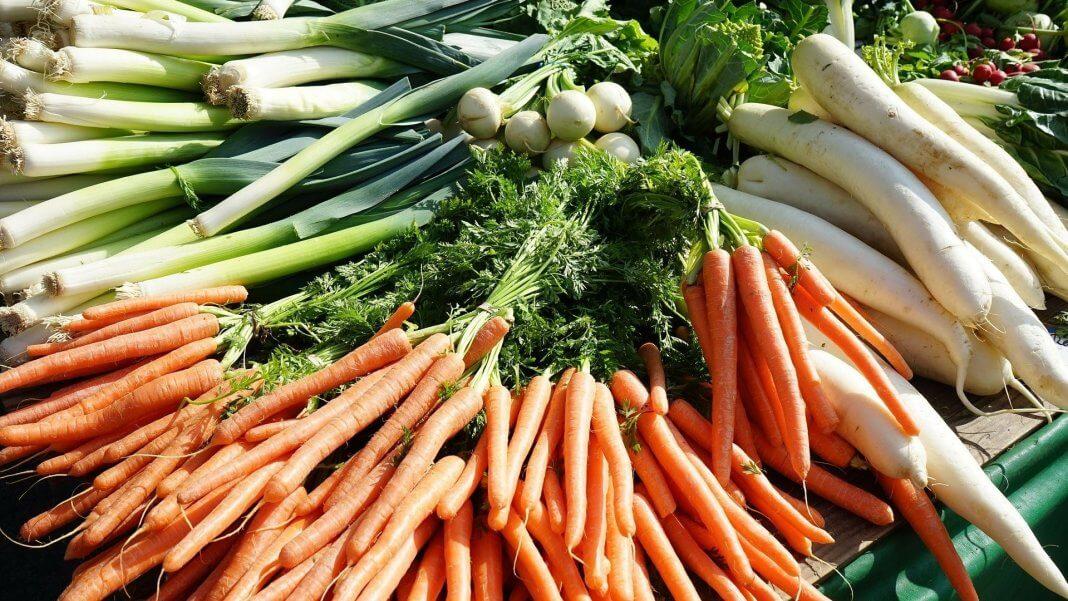紅蘿蔔和白蘿蔔不能一起煮 ,為什麼?因為那是謠言在騙你呀~一起煮絕對沒問題。(圖片來源:https://pixabay.com)