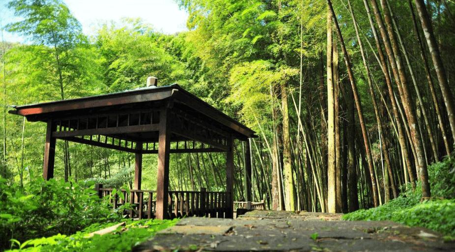 奮起湖神社。(source by vrwalker.net)