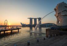 來點Sense/超詳細!港澳、泰國、新加坡 出入境表格 教學(圖片來源:https://pixabay.com)