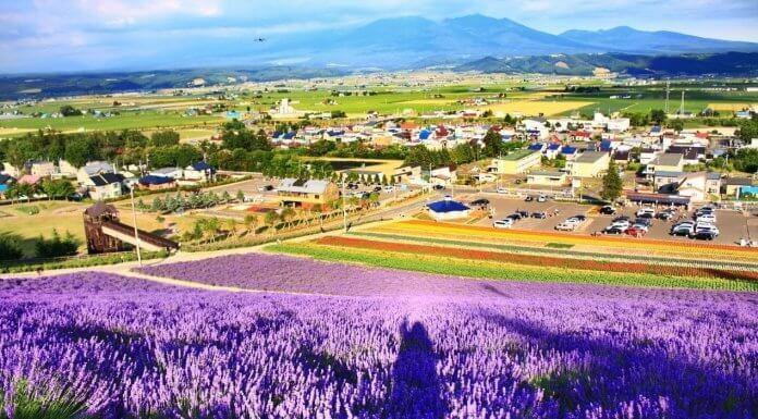來點Sense/去對季節更好玩!日本、韓國等地區 適合旅遊時間 總整理(Photo via Flickr, by Bee Fly, CC License)