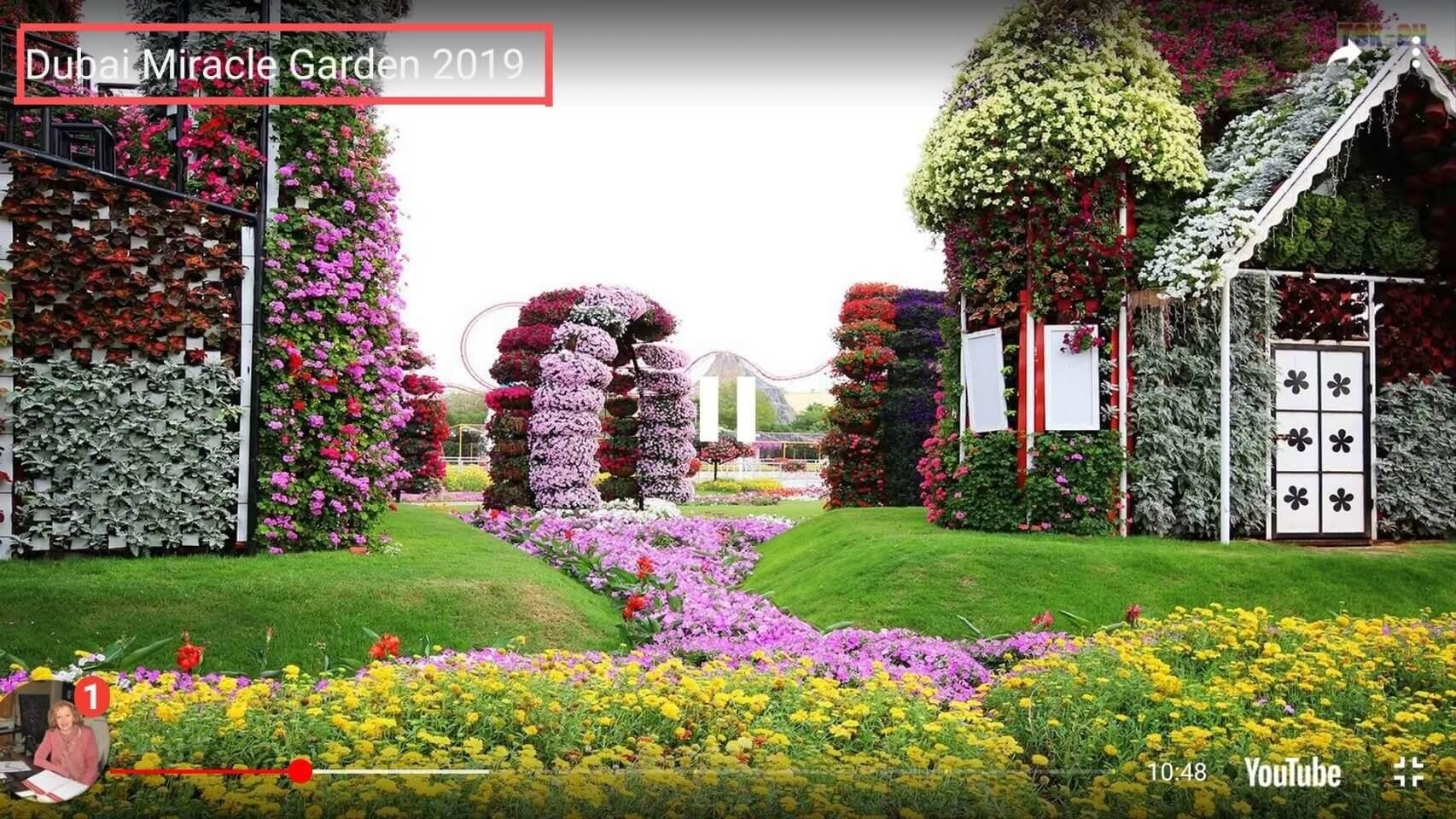 這不是台中花博,是杜拜奇蹟花園。