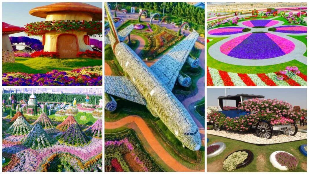 台中花博搶先看 的照片好美好讚?這根本不是台中花博,而是杜拜奇蹟花園啊!
