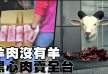 羊肉沒有羊 ,黑心肉賣全台?這是2014年的舊新聞,勿轉發!(圖/翻攝自蘋果新聞網Youtube畫面)