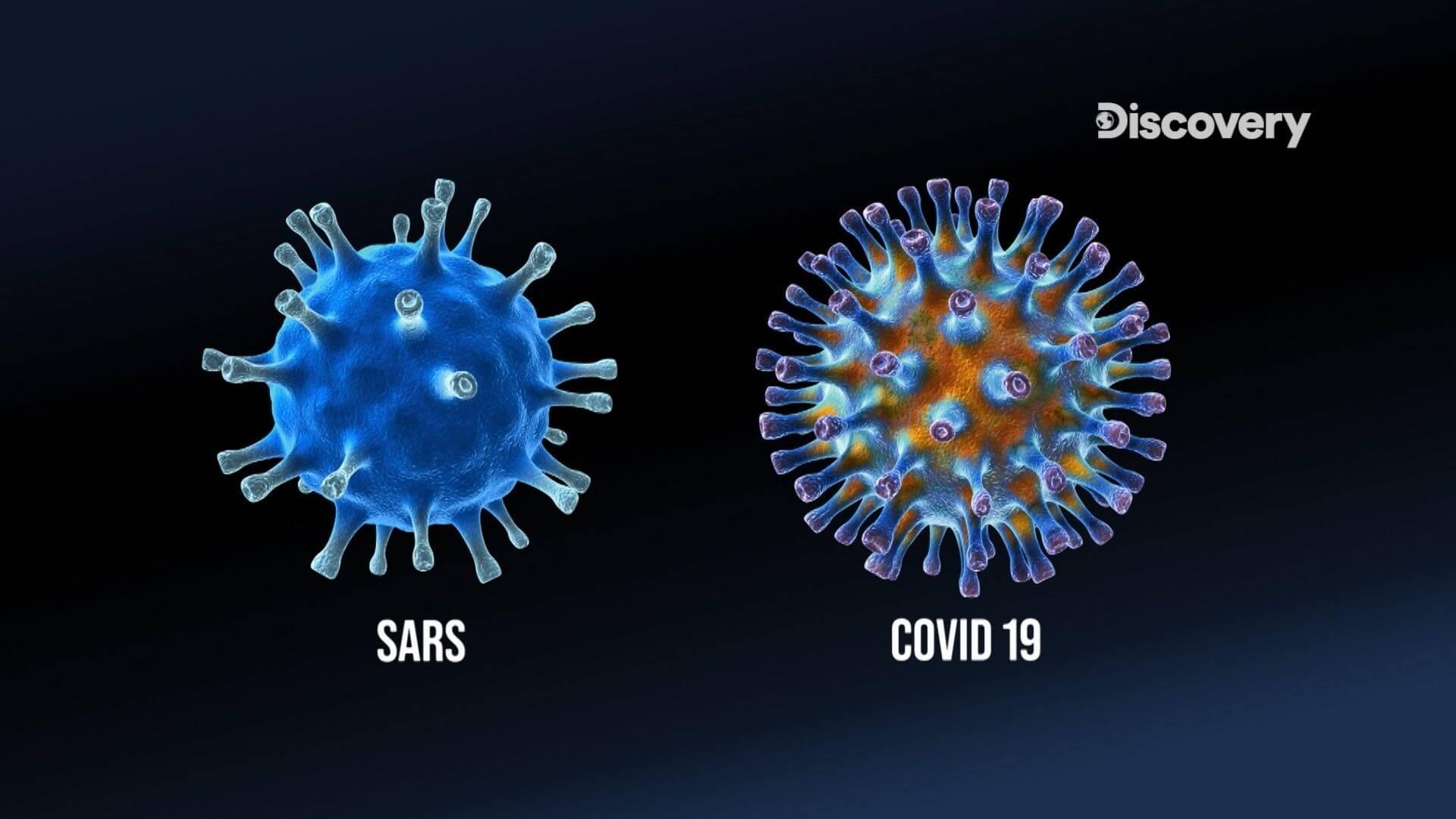 新冠病毒的傳播途徑令人難測,根據研究顯示,新冠病毒竟能在塑膠製品上存活高達3天,專家也提出病毒一旦穿透宿主細胞即可一再自行複製,而終結病毒的複製力也可能是終結它的關鍵!(圖/Discovery頻道提供)