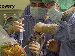 來點Sense/Discovery《 台灣無比精采 》10月11日首播,發掘台灣農業、生醫新視界(圖/Discovery頻道提供)