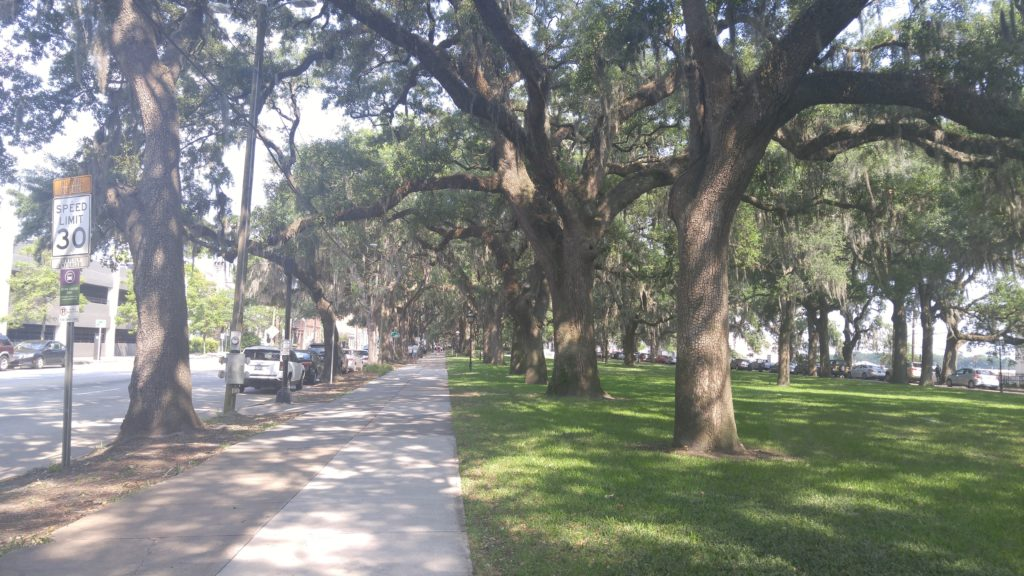 Where to Run in Downtown Savannah - Downtown Savannah Running Routes for vacationers