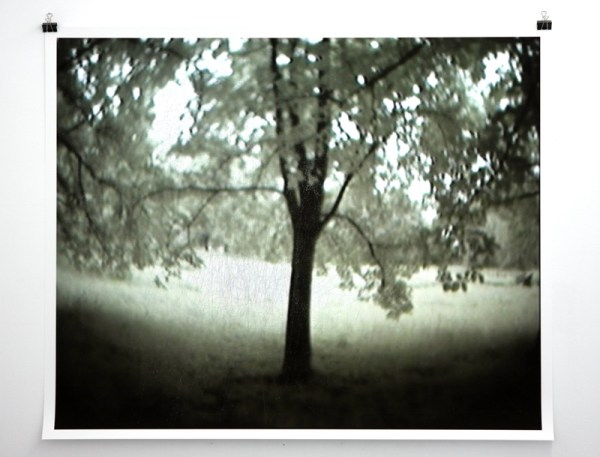 Rune Peitersen, Observer Effect: A Tree in the Forest, 2011