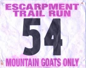 Escarpment Trail Run 30K 2013. Finish in 4:40:41, overall place #85, the mountain goat requirement is no joke — at Catskills, Upstate NY.